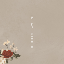 220px-Shawn Mendes In My Blood
