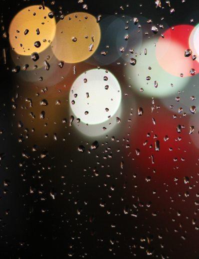 rain (photo by Bob Clark)