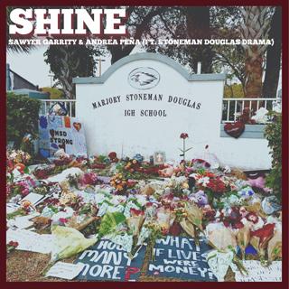 Shine cover